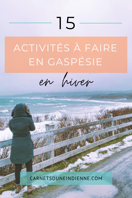 Gaspésie hiver 2